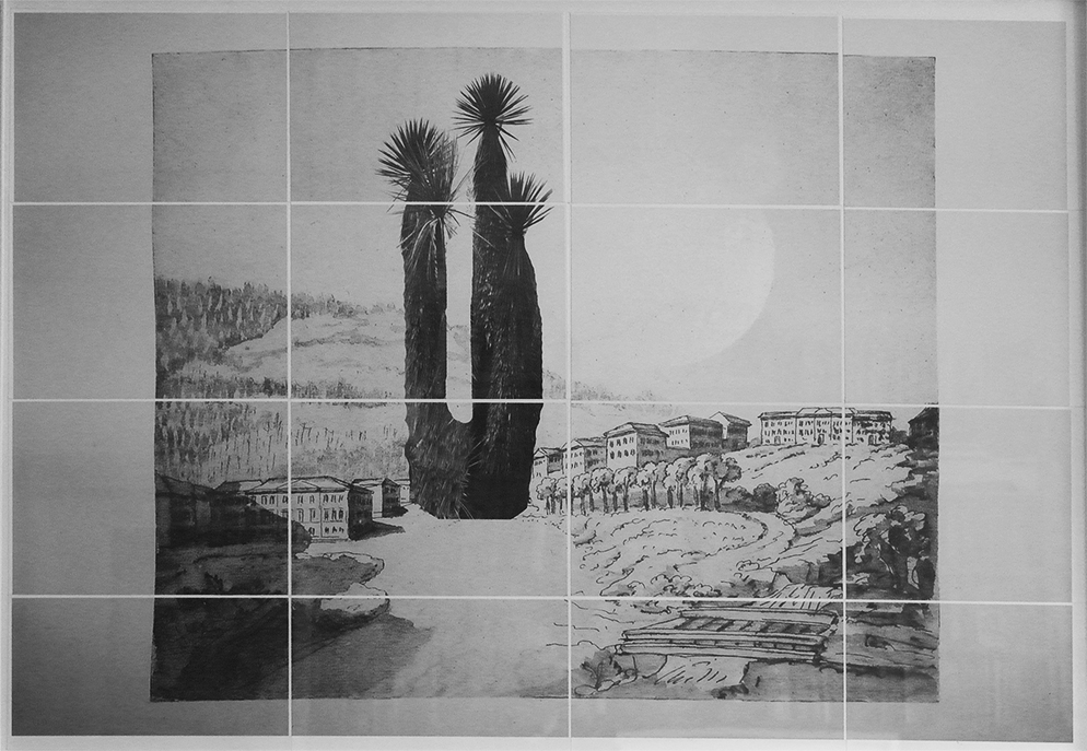 Land Art. Simon Levy, artist. Tropical tree superimposed on to fragmented Goethe sketch.